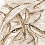 dagaa_fish